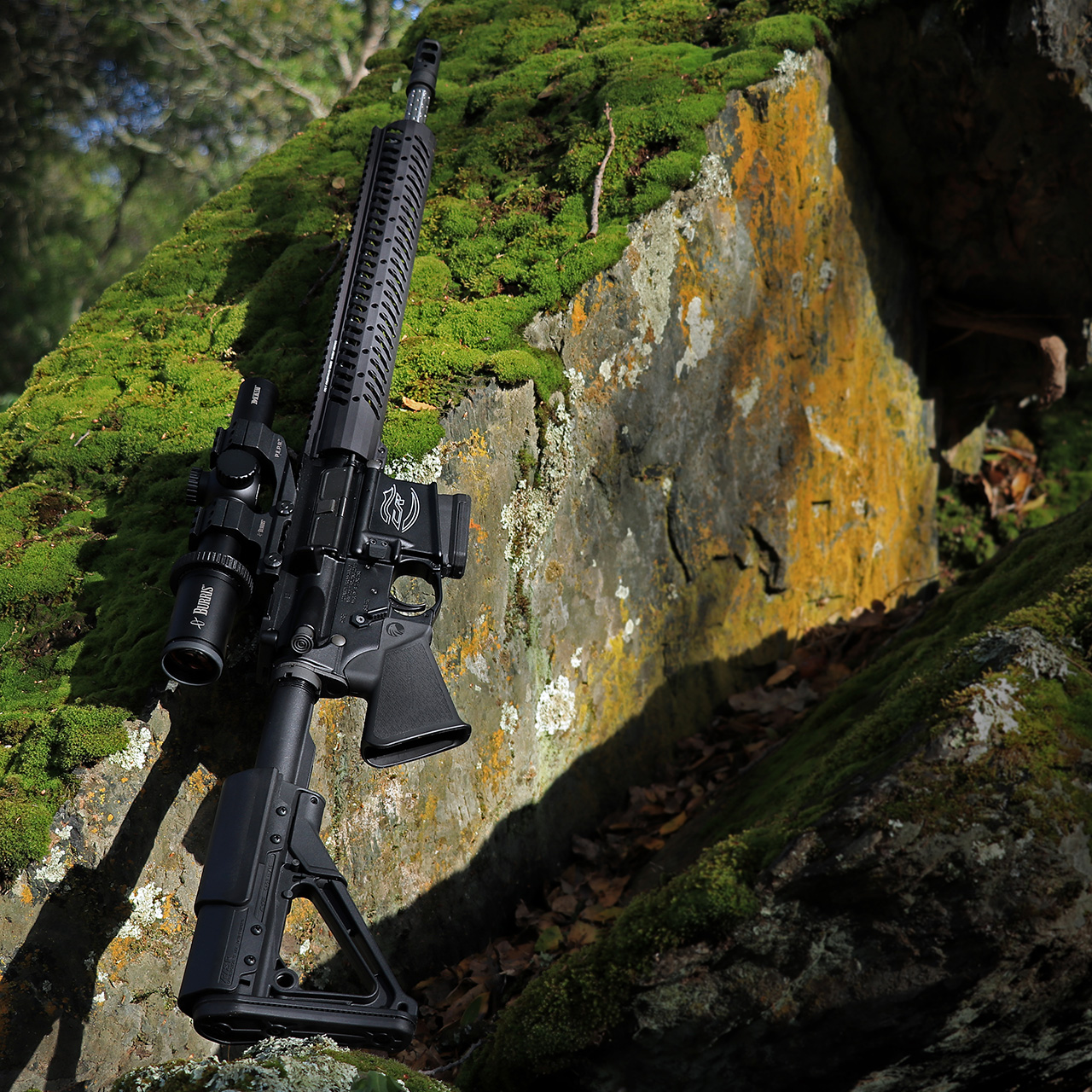 Sparrow Dynamics Featureless Colt Competition Rifle on moss rock